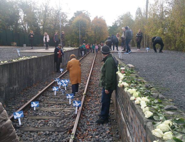 רציף 17 ברונוולד - הטיול היהודי - הטיולים של נדב בברלין